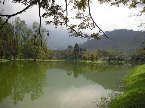 lake-garden.jpg
